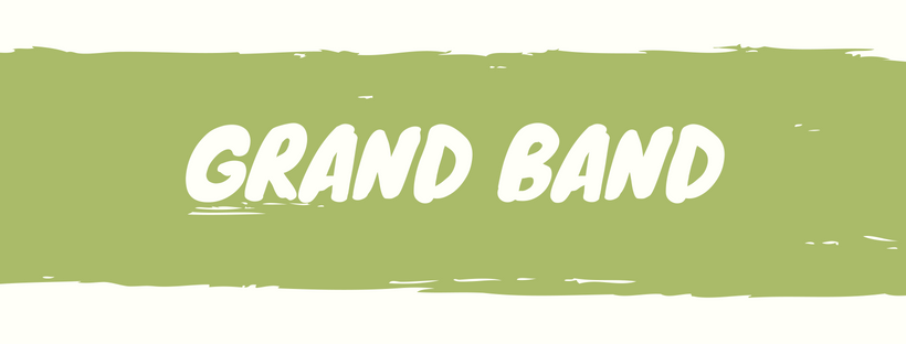 Grand Band Music Classes | Music Therapy in Motion, LLC